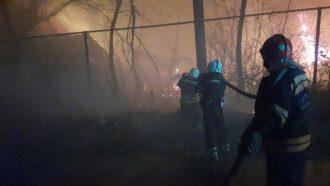 Рада прийняла закон, що посилює штрафи паліям лісів в Україні