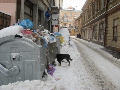 У Клічука взялися перевіряти роботу підприємства, що відповідає за вивіз сміття у Чернівцях