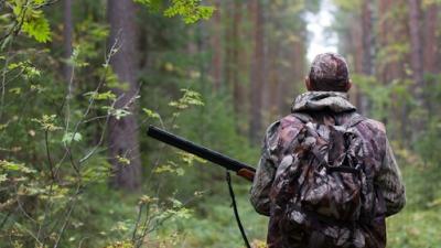 Загубив телефон із світлиною вбитого ведмедя: з'явилося розслідування щодо браконьєрства у лісах Буковини