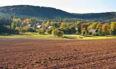 Ціна гектара: в уряді назвали орієнтовну вартість землі