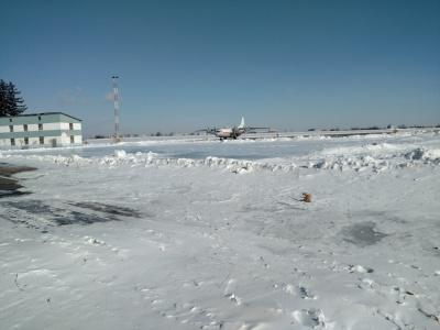Аеропорт «Чернівці», попри снігопад, прийняв два рейси з Туркменістану та Сербії