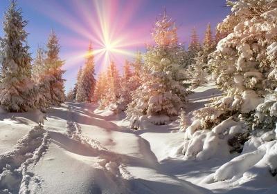 Мороз до -15 градусів: на заході України буде найхолодніше
