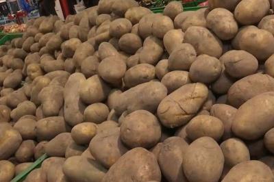 В Україні відчутно подорожчала картопля: яка зараз ціна