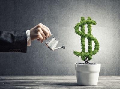 Куди вигідно вкладати гроші: пояснення чернівецьких експертів
