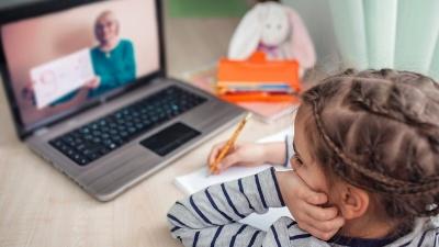 Знову дистанційка: які школи на Буковині навчаються онлайн
