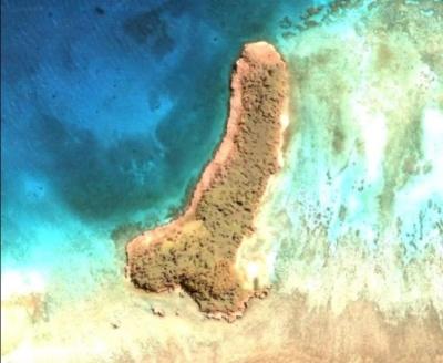 На Google-картах знайшли острів у формі пеніса