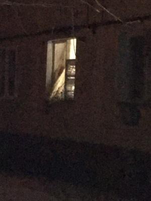 Вибух у квартирі в Новодністровську: очевидці повідомили версію інциденту – фото