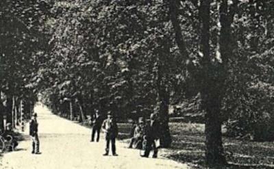 Невідома Буковина: як Народний сад став центральним парком Чернівців