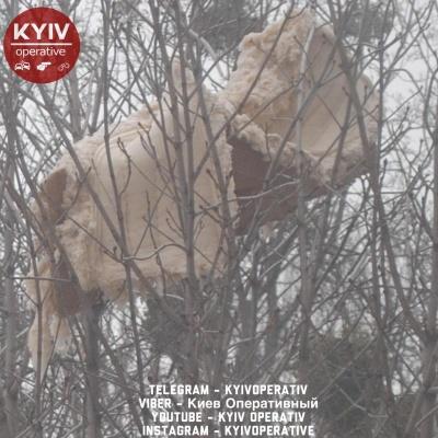 У Києві викинули у вікно диван - він застряг на дереві над головами у перехожих