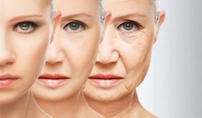 Вчені назвали два  продукти, які зупиняють старіння