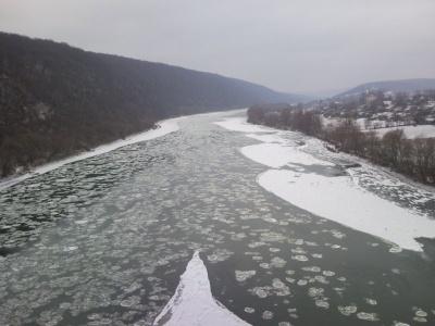 Рятувальники попередили про підйом рівнів води у річці на Буковині