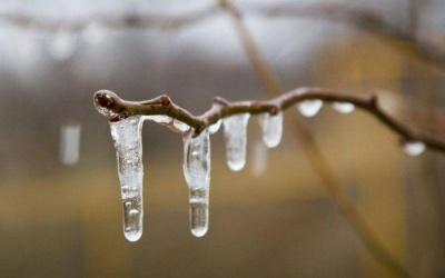 На вихідні в Україну прийде сніг