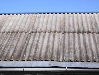 Анекдот дня: про діда і дах