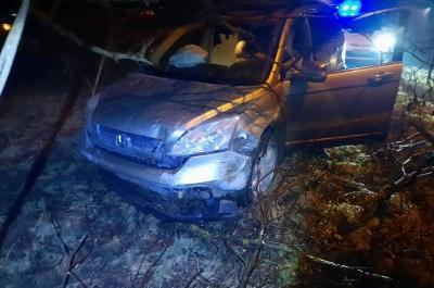 ДТП у Чернівцях: п'яний водій в'їхав в огорожу