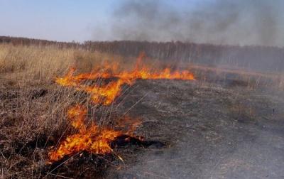 В Україні заборонять випалювати суху траву: закон набрав чинності