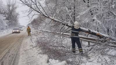Негода на Буковині наробила біди: рятувальники допомогли водіям