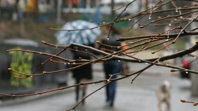 На Буковині ще очікуються морози до 8 градусів