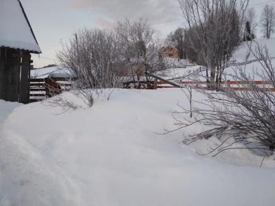 На Буковині посеред весни зафіксували 22 градуси морозу – фото