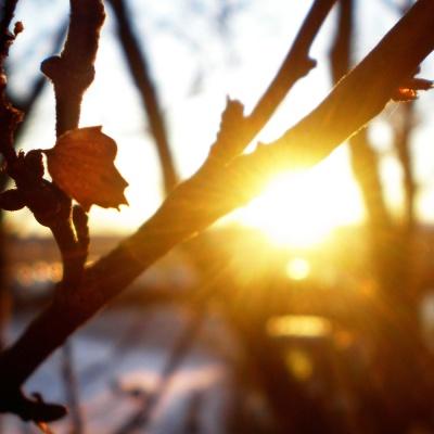 До +20 в Україні: синоптик розповіла про прихід тепла