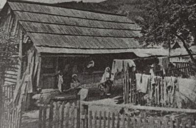 Невідома Буковина: як у давні часи будували хати, і які їх типи були в регіоні