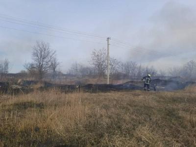 Горять гектари землі: на Буковині почалися пожежі через суху траву