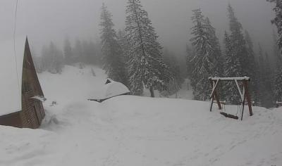 Йшов 28 день весни: у Карпатах лютує спрважня зима із снігом
