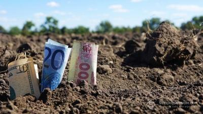 Ринок землі: назвали вартість гектара ріллі у Чернівецькій області