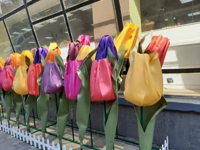 Різнокольорові тюльпани у центрі міста: біля одного із супермаркетів поставили весняну композицію