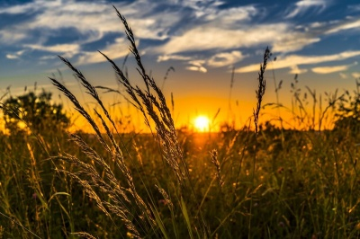 Яким буде літо в Україні: прогноз синоптика