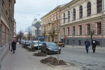 «Весна прийшла – саджати будемо»: депутат закликав чернівчан до озеленення міста