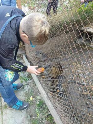 У Чернівцях дітей запрошують вигуляти тварин на зоомайданчику пам'яті Василя Аксенина - фото