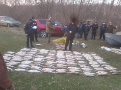 На Буковині рибпатруль затримав двох браконьєрів, які наловили риби на 1,6 млн грн