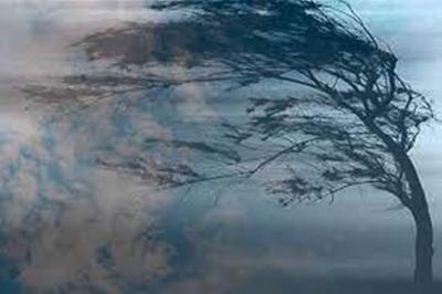 Штормове попередження: на Буковині в найближчі кілька годин очікується погіршення погоди