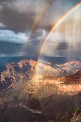 Як розважається природа: 14 фото, що вразять навіть незворушного