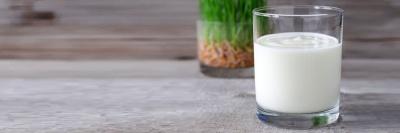 У чому переваги кефіру: як зробити корисний напій вдома