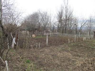 Самовільні «дачники»: у спальному районі Чернівців мешканці поробили городи - фото