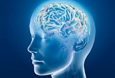 Частина предметів побуту несе шкоду для мозку - вчені