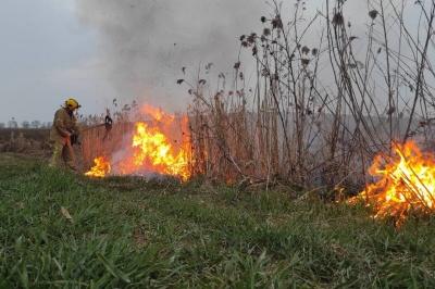 Буковина у вогні: за добу в області майже 20 разів горіла суха трава