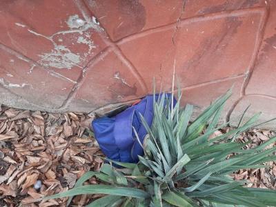У Чернівцях біля лікарні виявили підозрілий предмет