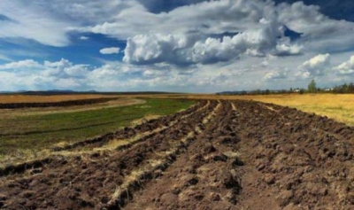 Ставки зростатимуть: в Україні оренда паїв дорожчатиме після відкриття ринку землі