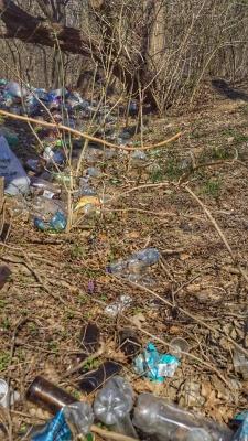 На Буковині береги Дністра встелені сміттям – фото