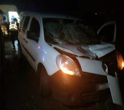 Засліпило дальнє світло фар: на Буковині у ДТП збили пішохода