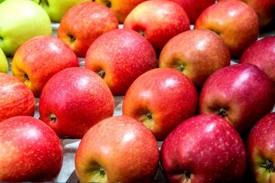 Мін'юст відреагував на рейдерське захоплення великої компанії з вирощування яблук на Буковині