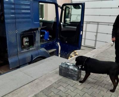 На Буковині службовий собака допоміг виявити тисячу пачок контрабандних цигарок