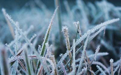 Українців попередили про сильні заморозки