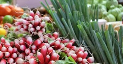 Медики попередили про небезпеку ранніх овочів і зелені