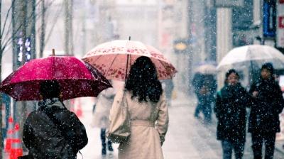 Слизькі дороги та мороз: синоптики попереджають про погіршення погоди на Буковині