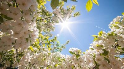 Синоптики обіцяють потепління на Великдень