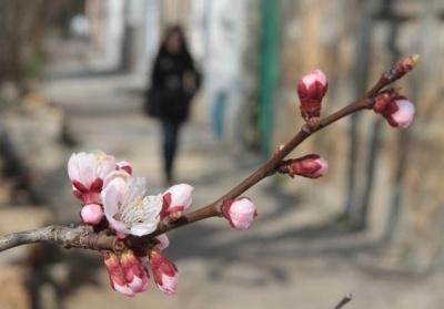 Синоптик попередила про нове похолодання у травні