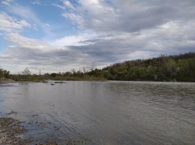 Розлилась вода: у Чернівцях помітно піднявся рівень річки Прут – фото